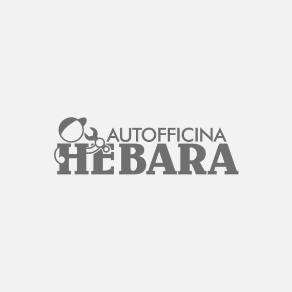 Manicromio | agenzia di grafica e stampa | ostia lido | Roma | web | autofficina hebara logo